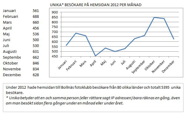 statistik_hemsidan_2012